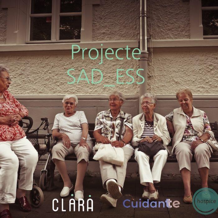 SAD_ESS Projecte